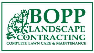 Bopp Landscape